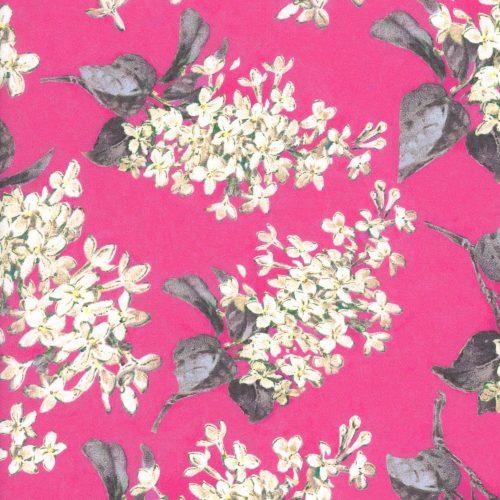 Archive Lilac E