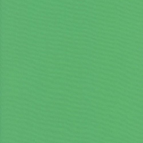 Fern (Liberty Solids)