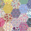 "2"" hexagons bold rainbow - Liberty Tana Lawn Pre-cuts - The Strawberry Thief"