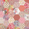 "1"" hexagons peachy orange - Liberty Tana Lawn Pre-cuts - The Strawberry Thief"