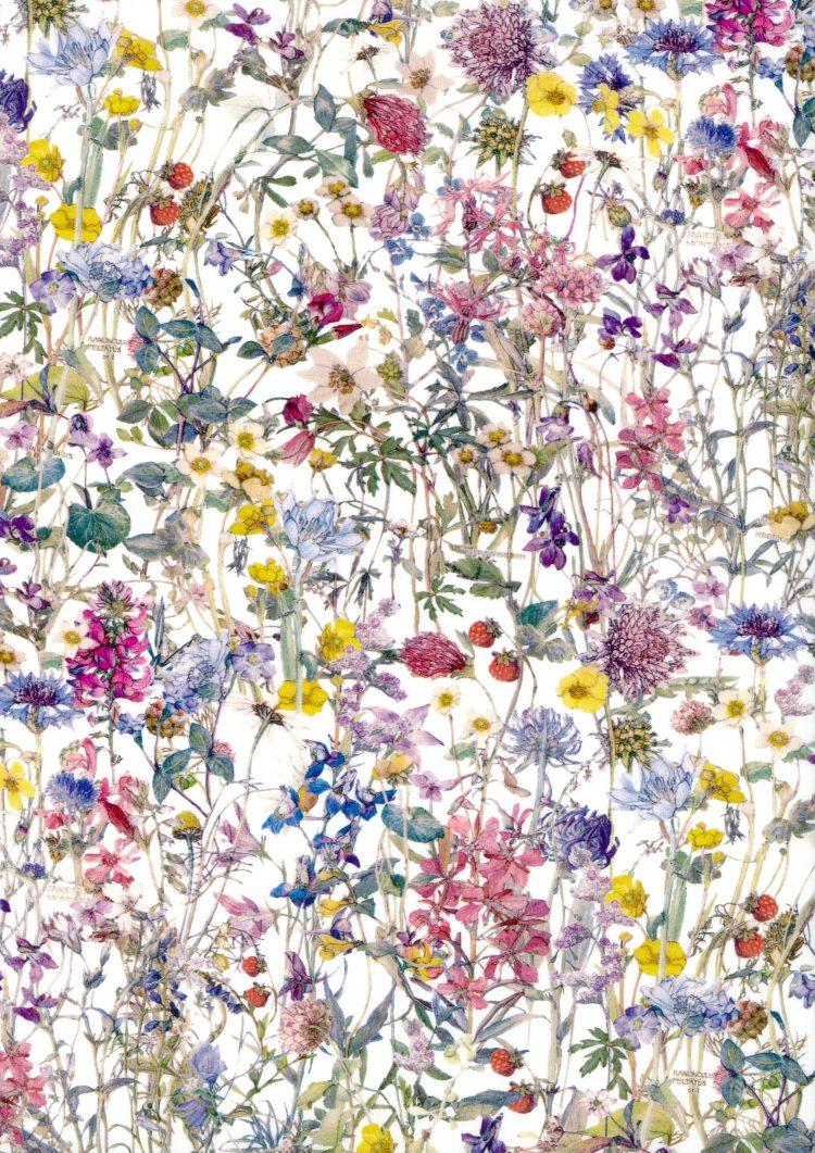 Wild Flowers A - Liberty Tana Lawn Bespoke Collection - Liberty of London