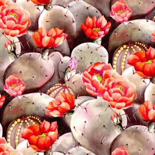 Desert Rose A