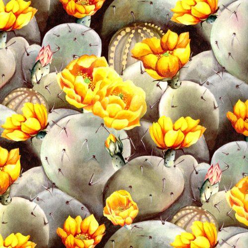 Desert Rose B