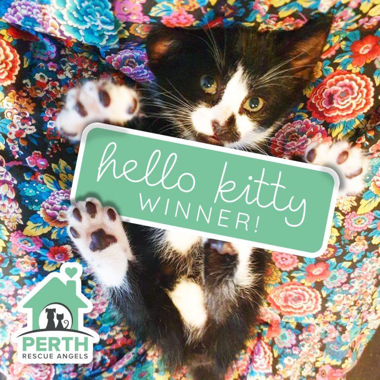 Hello Kitty Winner!!